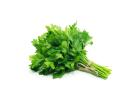 Fresh Parsley (Bunch)